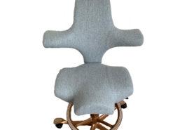 HÅG Capisco Ergonomic Office Chair